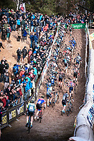 peloton <br /> <br /> CX Superprestige Zonhoven (BEL) 2019<br /> Elite & U23 mens race