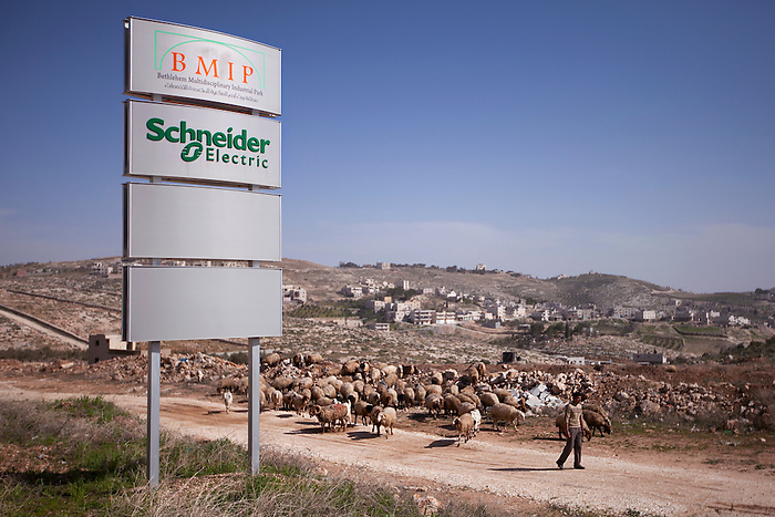 Jan 2013, Bethlehem suburb, Industrial zone. Initiated with the support of the French president Nicolas Sarkozy in order to support the Palestinian economy, the idea was to create a free zone for national and international investors, where the import and export would be facilitated thanks to privileged conditions negotiated with Israel, exempting the raw materials of import taxes and facilitating the passage of camions at the checkpoints.  With only one Palestinian investor so far, the BMIP, company in charge of developing the zone, is struggling with little success to convince companies to move in the industrial zone. Out of the three projects of industrial zones in Palestine, it is however the less unfortunate one: it has the advantage of being the only one in the A zone, the 16% of the West Bank that is not under the control of the Israeli army. Even though, a small piece of the main road that would give access for camions is still under the control of the Israeli army, and so far didn't get the permission to be built, blocking the development of the zone.