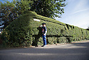 11/09/16<br /> <br /> Benjamin Hnat-Day (6) pretends to be the train driver.<br /> <br /> A hedge in Nottinghamshire has been crafted into a one third scale replica model of the Mallard. The living masterpiece clipped into a privet hedge is 7ft tall and 42 ft long. <br /> <br /> &quot;The shape of the hedge just lent itself to being cut into a train&quot; said 72 year old Brian Childs, a retired AA controller and steam enthusiast who has taken the last three years perfecting his topiary creation alongside his bungalow in Morkinshire Lane, Cotgrave.<br /> <br /> &quot;Mallard broke the world steam record only 20 minutes from here in 1938 so that was the obvious choice.<br /> <br /> &quot;I have dodgy knees and cannot climb ladders so I didn't want it to be too high - I'm 6'4&quot; and can just reach the top of the train.<br /> <br /> &quot;I trim it for a couple of hours every other day from Spring to Autumn. The front still needs to 'grow' a bit more so I can add one more wheel.<br /> <br /> &quot;I've even included a footplate so a young lad from across the road can pretend he's the train driver. He thinks my blue shed is the ticket office.<br /> <br /> <br /> All Rights Reserved, F Stop Press Ltd. +44 (0)1773 550665