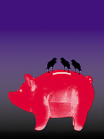 Three black crows on piggy bank