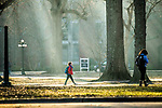 Sunbeam.  Photo by Kevin Bain/University Communications Photography