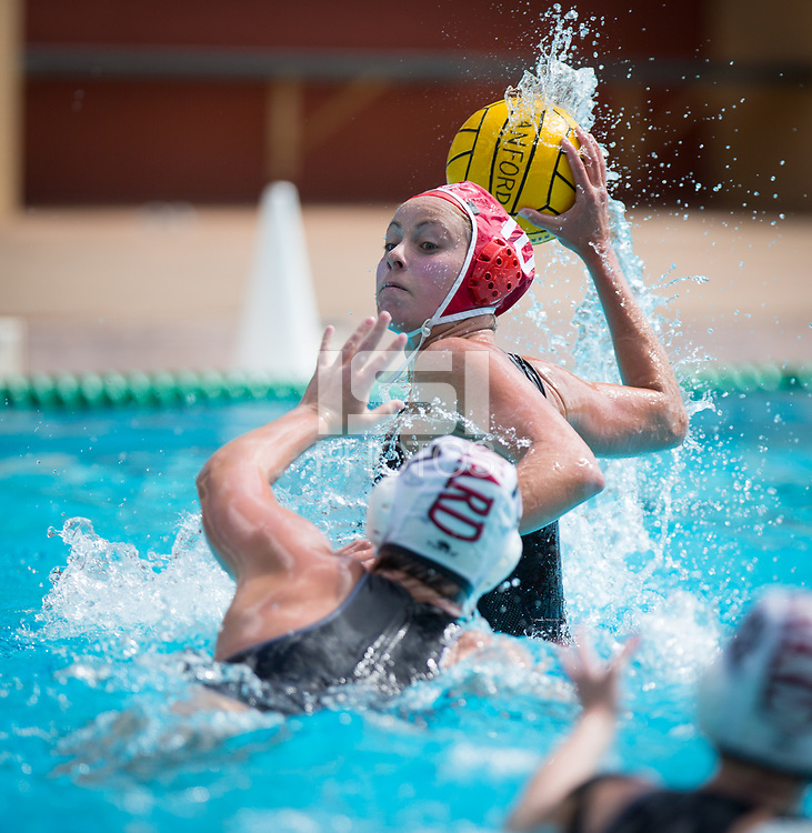 STANFORD, CA - March 23, 2019: Kat Klass at Avery Aquatic Center. The #2 Stanford Cardinal took down the #18 Harvard Crimson 20-7.