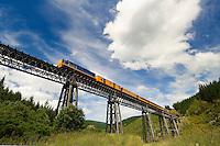 The historic Taieri Gorge Railway train crosses the Wingatui Viaduct, Otago