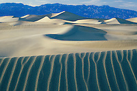 Mesquite Flat Dunes<br />