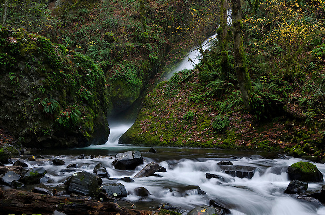 Stream below Bridal Veil Falls in the Columbia River Gorge