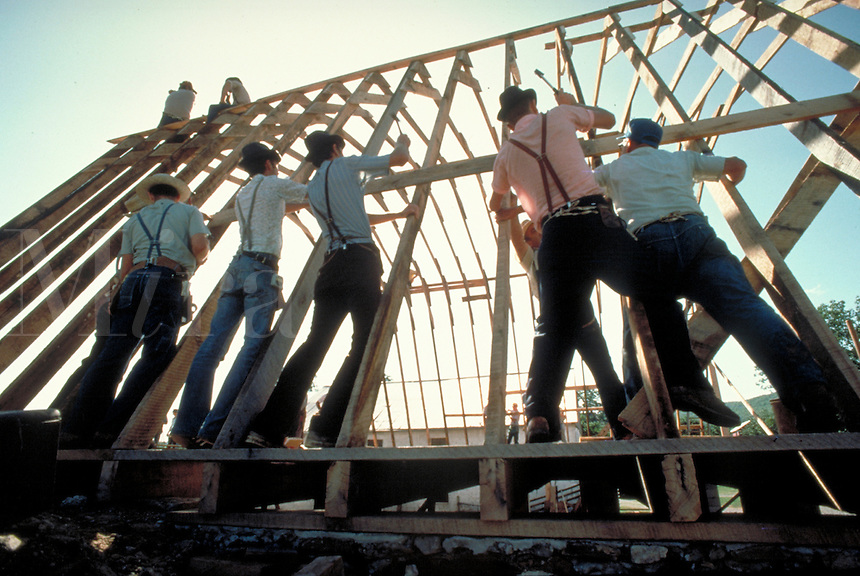 Conservative Mennonite men working together nailing the rafters of a new barn for a community member during a one-day barnraising. Mennonite farmers. Lancaster Pennsylvania United States Mennonite farm.