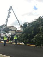 2017 FPL Hurricane Irma restoration in Bradenton, Fla. on Sept. 11, 2017