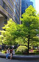 Green Infrastucture