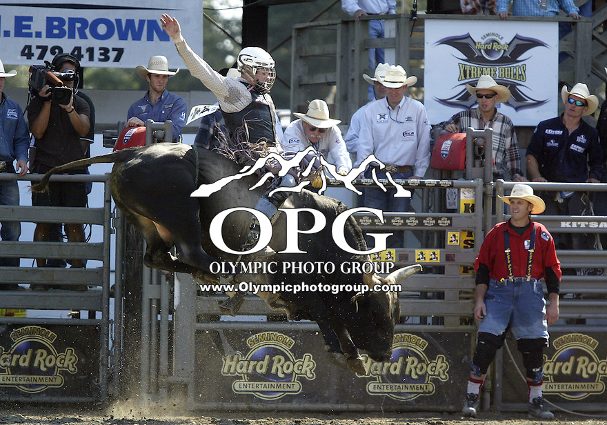 30 Aug 2009:  Tate Stratton riding the bull Zoomer was not able to score on his second round ride during the Extreme Bulls tour stop in Bremerton, Washington.  Bremerton was the last stop in the Wrangler Million Dollar Pro Rodeo Silver Tour for 2009.