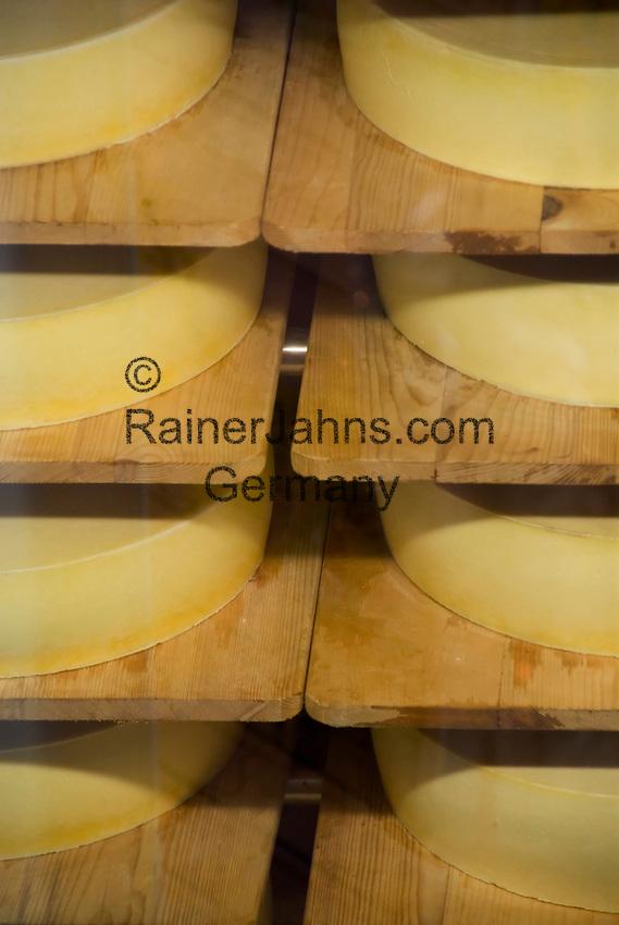 CHE, SCHWEIZ, Kanton Bern, Berner Oberland, Engstlenalp am Ende des Gentals: Almkaese - Lagerung und Reifung in der Almkaeserei   CHE, Switzerland, Bern Canton, Bernese Oberland, Engstlenalp at Gen Valley: alp-cheese, storage and maturing at the cheese dairy