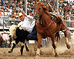 PRCA cowboy Dean Gosuch of Gering, Nebraska turned in an amazing 8.6 second steer wrestling run during the final round action at the 112th annual Cheyenne Frontier Days Rodeo in Cheyenne, Wyoming on July 27, 2008. Dean's aggregate time of 25.9 seconds on three runs earned him the Cheyenne Steer Wrestling championship buckle.
