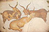 6th century Byzantine Roman mosaics of goats from the peristyle of the Great Palace from the reign of Emperor Justinian I. Istanbul, Turkey.
