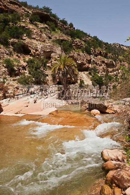 Afrique/Afrique du Nord/Maroc/Env d' Immouzer: Dans la Vallée du Paradis