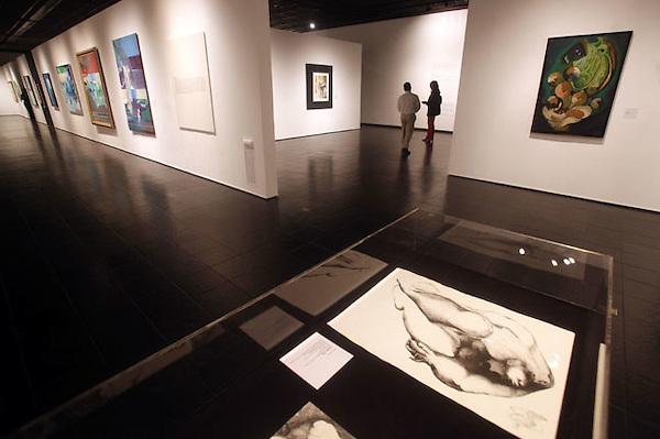 (((SERIE GRÁFICA 5 DE 8))) STO05. SANTIAGO (REPÚBLICA DOMINICANA), 21/12/11.- Vista de varias obras este, martes 20 de diciembre de 2011, en el Centro León, en Santiago (República Dominicana). Con una completa agenda de exposiciones nacionales e internacionales, eventos y conferencias, es uno de los centros culturales más importantes del Caribe. EFE/Orlando Barría.