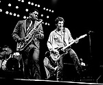 Clarence Clemons and Bruce Springsteen 1981