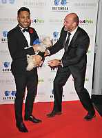 Danyl Johnson and James Crossley at the Battersea Dogs &amp; Cats Home Collars &amp; Coats Gala Ball 2018, Battersea Evolution, Battersea Park, London, England, UK, on Thursday 01 November 2018.<br /> CAP/CAN<br /> &copy;CAN/Capital Pictures