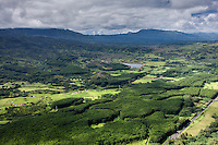 A helicopter tour provides an aerial view of green landscape, Lihue, Kaua'i