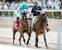 HALLANDALE BEACH, FL - FEB 3:Thewayiam #1 trained by H.Graham Motion with Jose Ortiz in the irons prepares to run and win the $100,000 Sweetest Chant Stakes (G3) at Gulfstream Park on February 3, 2018 in Hallandale Beach, Florida. (Photo by Bob Aaron/Eclipse Sportswire/Getty Images)