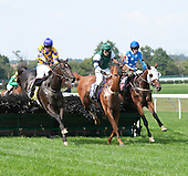 Alajmal, left, Forgotten Man, and Gustavian duel to the wire in the Entenmann.