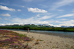 An angler walking the shore of the Moraine River, Alaska