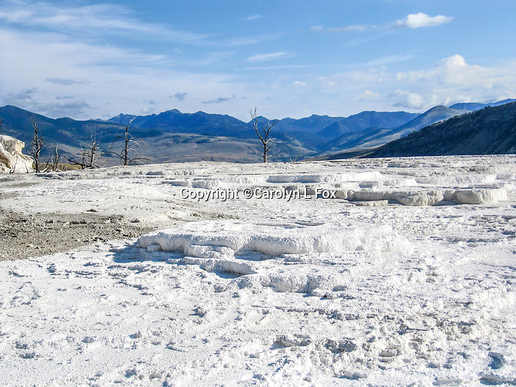 Textures create an interesting landscape at Mammoth Hot Springs in Yellowstone National Park.