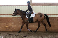 Alicia Miller, Margie Gayford Clinic, Skyland Stables, Horse