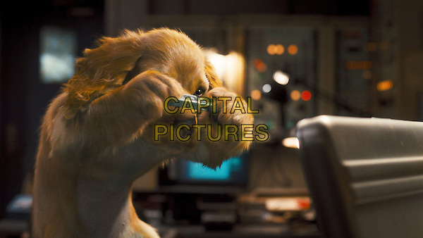SCENE.in Cats & Dogs: The Revenge of Kitty Galore.*Filmstill - Editorial Use Only*.CAP/FB.Supplied by Capital Pictures.