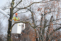 NWA Media/ J. T. WAMPLER- Arborist Rex Archer of Fayetteville works Friday Dec. 12, 2014 at taking down a tree at the Ozarks Electric Cooperative office on Emma Ave. in Springdale. The tree was dead and needed to be removed before the winter weather sets in.