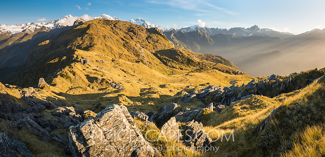Views of Southern Alps with Mount Tasman and Aoraki, Mount Cook in background from Mt. Fox, Westland Tai Poutini National Park, West Coast, UNESCO World Heritage Area, New Zealand, NZ