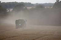 Tractor and trailer carting grain<br /> ©Tim Scrivener Photographer 07850 303986<br />      ....Covering Agriculture In The UK....
