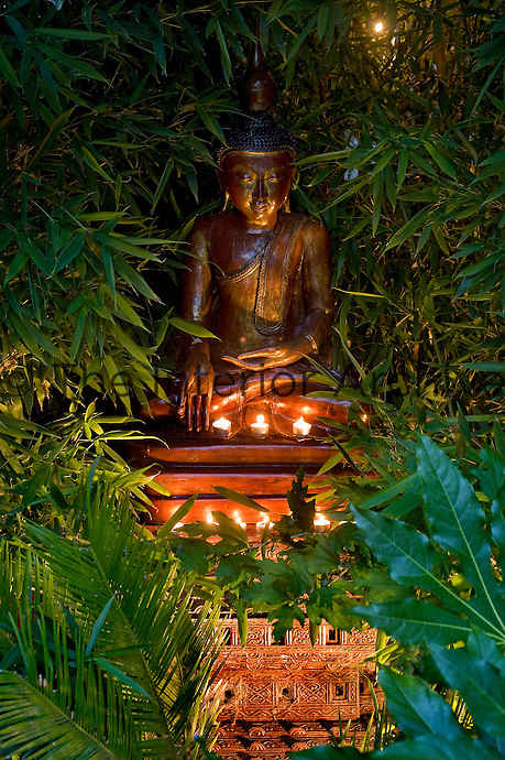 A Buddha amongst the bamboo in the garden is lit by tealights