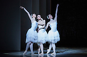 London, UK. 13 July 2016. The Australian Ballet perform Swan Lake - one prince torn between two loves - during a dress rehearsal at the London Coliseum. Performances run from 14 to 16 July 2016. With Amber Scott as Odette, Adam Bull as Prince Siegfried and Dimity Azoury as Baroness von Rothbart. Choreography by Graeme Murphy, Artistic Direction by David McAllister to music by .