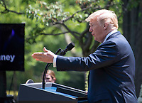 United States President Donald J. Trump announces a &quot;new blueprint&quot; for lowering prescription drug prices in the Rose Garden of the White House in Washington, DC on Friday, May 11, 2018.<br /> CAP/MPI/RS<br /> &copy;RS/MPI/Capital Pictures