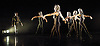 Orpheus<br /> choreography by Will Tuckett<br /> <br /> Ballet Black <br /> Artistic director Cassa Pancho<br /> <br /> Damien Johnson (as Orpheus)<br /> left<br /> <br /> <br /> <br /> Photograph by Elliott Franks