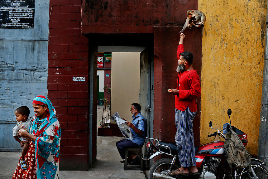 A Bangladeshi man feeds a monkey as he stands on a motorcycle at a street in Dhaka, Bangladesh.