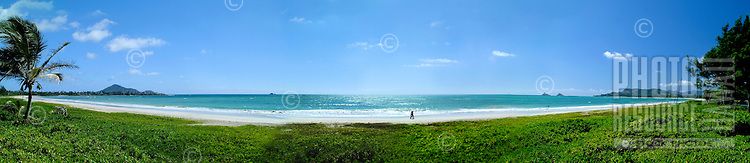 A beautiful panorama shot of rich green grass leading to an almost deserted white sand beach and clear blue ocean. Framed by a palm tree on left and green bushes on right.