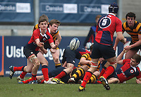4 March 2013; Ballyclare scrum half Andrew Eastop gets the ball away during the schools cup semi-final clash between RBAI and Ballyclare High School at Ravenhill Belfast. Photo Credit : John Dickson / DICKSONDIGITAL