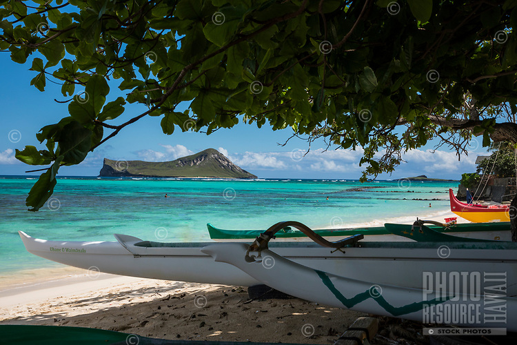 Outrigger canoes at Waimanalo Beach, Windward O'ahu; distant swimmers explore the reef of Waimanalo Bay, with Rabbit and Bird Islands beyond.