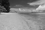 Palau, Micronesia -- Tranquil beach in Palau.