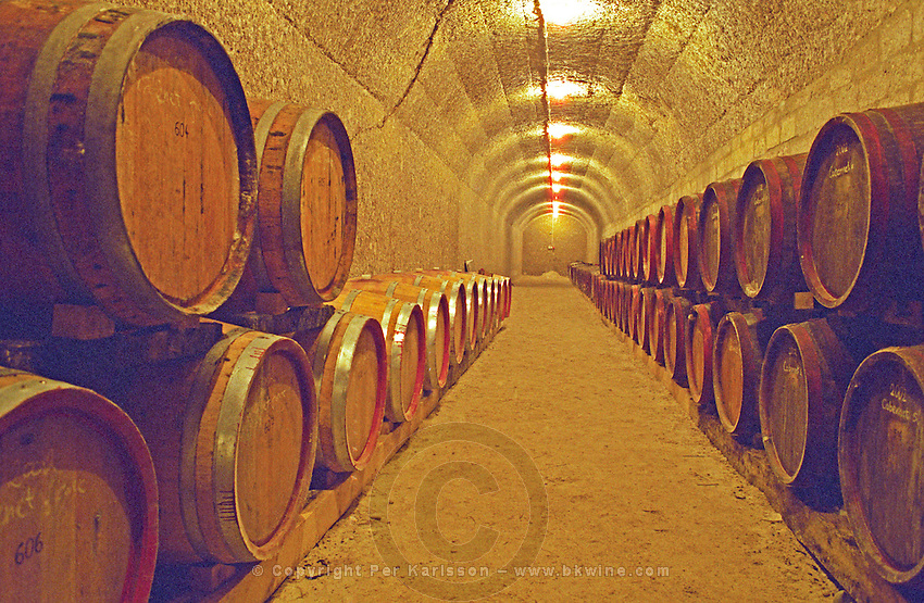 The Thummerer winery in Eger: the underground cellar tunnels with rows of barrels with aging wine. A brand new tunnel, recently dug with new wooden barrels. Thummerer is one of the leading growers and wine makers in Eger. Credit Per Karlsson BKWine.com