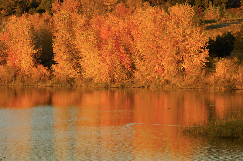 This peaceful fall scene calms me as I look at it.