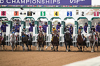 DEL MAR, CA - NOVEMBER 03: Horses break out of the gate at the start of the Breeders' Cup Las Vegas Dirt Mile on Day 1 of the 2017 Breeders' Cup World Championships at Del Mar Thoroughbred Club on November 3, 2017 in Del Mar, California. (Photo by Alex Evers/Eclipse Sportswire/Breeders Cup)