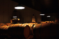 Wine ages in oak barrels in a underground celler