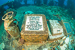 The wrecks of Truk Lagoon : The Fujikawa Maru