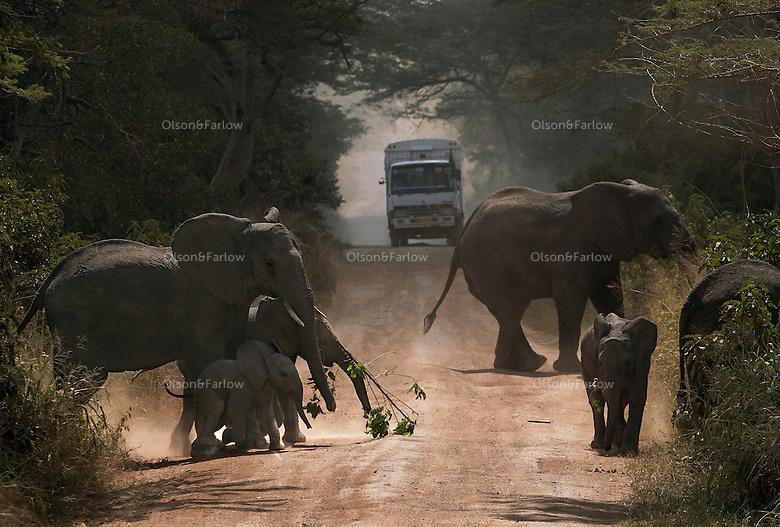 Wildlife on the road between Robanda and Serengeti National Park.