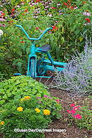 63821-23009 Old blue tricycle in flower garden, Marion Co., IL