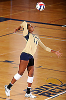 11 September 2011:  FIU setter Renele Forde (14) serves in the first set as the FIU Golden Panthers defeated the Florida A&M University Rattlers, 3-0 (25-10, 25-23, 26-24), at U.S Century Bank Arena in Miami, Florida.