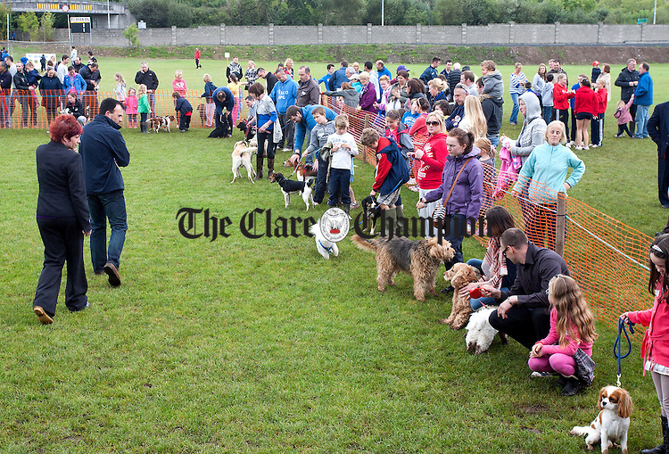 160912.The judges carefully considering their next winner at Cratloe Dog Show and Fun Day at Cratloe GAA Club.