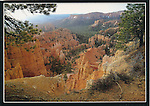 Bryce Canyon National Park, Queen's Garden
