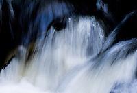 Dodge Creek Kootenai National Forest Montana